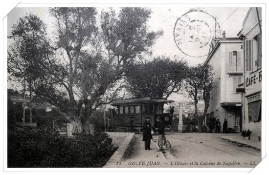 L'olivier et la colonne Napoléon depuis l'avenue de la Gare